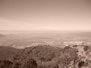 El valle de Tala/Ameca