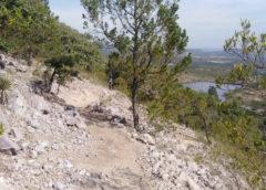 Entre pinos y piedras