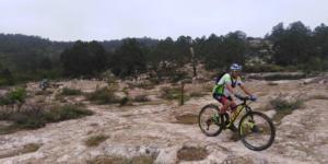 Ciclista en la brisa II